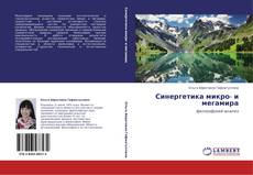 Bookcover of Синергетика микро- и мегамира