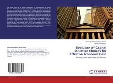 Bookcover of Evolution of Capital Structure Choices for Effective Economic Gain