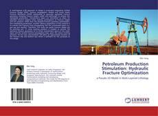 Couverture de Petroleum Production Stimulation: Hydraulic Fracture Optimization