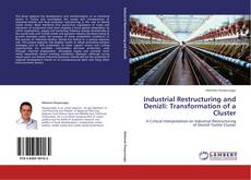 Industrial Restructuring and Denizli: Transformation of a Cluster kitap kapağı