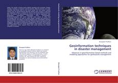 Geoinformation techniques in disaster management kitap kapağı