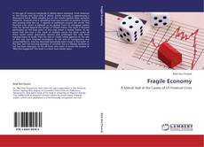 Portada del libro de Fragile Economy