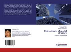 Bookcover of Determinants of capital structure