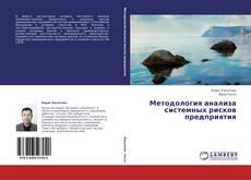 Обложка           Методология анализа системных рисков предприятия