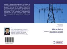 Bookcover of Micro-Hydro
