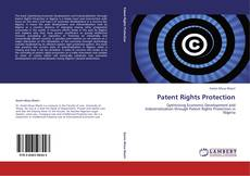 Bookcover of Patent Rights Protection