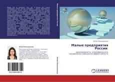 Малые предприятия России: kitap kapağı