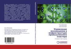 Управление инновациями в инфраструктуре промышленного кластера kitap kapağı