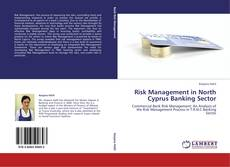 Bookcover of Risk Management in North Cyprus Banking Sector