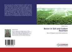 Couverture de Boron in Soil and Cotton Nutrition