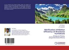 Buchcover von Nitrification Inhibition Efficiency of Brachiaria humidicola