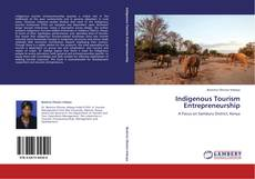 Indigenous Tourism Entrepreneurship的封面