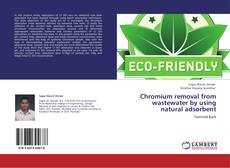 Chromium removal from wastewater by using natural adsorbent的封面