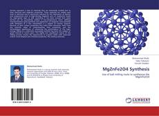 Bookcover of MgZnFe2O4 Synthesis