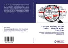 Economic Study of Rubber Products Manufacturing Industries kitap kapağı