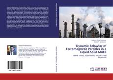 Bookcover of Dynamic Behavior of Ferromagnetic Particles in a Liquid-Solid MAFB