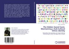 Buchcover von The Hidden Social Costs: Maintaining a Sub-Cultural Ethnic identity
