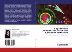 Bookcover of Управление денежными потоками дочерних компаний