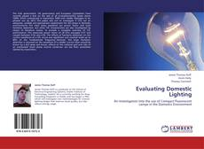 Bookcover of Evaluating Domestic Lighting