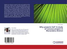 Buchcover von Why projects fail? A study of cassava project in Marondera District