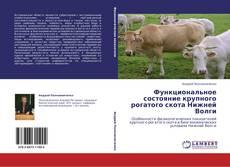 Bookcover of Функциональное состояние крупного рогатого скота Нижней Волги