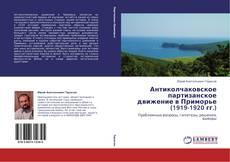 Portada del libro de Антиколчаковское партизанское движение в Приморье (1919-1920 гг.)
