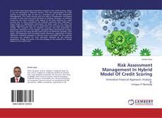 Copertina di Risk Assessment Management In Hybrid Model Of Credit Scoring