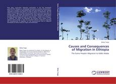 Bookcover of Causes and Consequences of Migration in Ethiopia