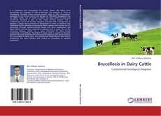 Brucellosis in Dairy Cattle的封面