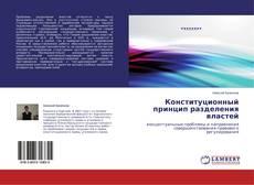 Конституционный принцип разделения властей kitap kapağı