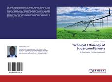 Bookcover of Technical Efficiency of Sugarcane Farmers