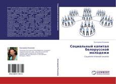 Социальный капитал белорусской молодежи kitap kapağı