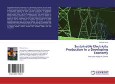 Bookcover of Sustainable Electricity Production in a Developing Economy
