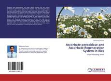 Couverture de Ascorbate peroxidase and Ascorbate Regeneration System in Rice