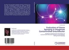 Couverture de Evaluation of Ozone Sparging in Oxygenate Contaminated Groundwater