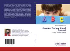 Buchcover von Causes of Primary School Dropout
