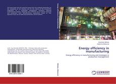 Energy efficiency in manufacturing kitap kapağı