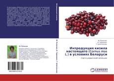 Bookcover of Интродукция кизила настоящего (Cornus mas L.) в условиях Беларуси
