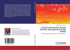 Critical Information Assets Disaster Management Audit Model kitap kapağı