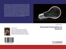 Capa do livro de Grassroot Innovations in Kashmir