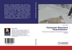 Bookcover of Палеолит Верхнего Поднепровья