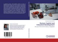 Bookcover of Human Capital and Industrial Development