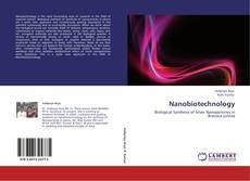 Capa do livro de Nanobiotechnology