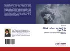 Bookcover of Black carbon aerosols in East Asia