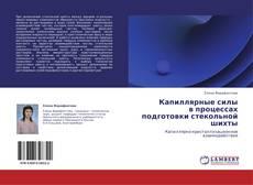 Bookcover of Капиллярные силы  в процессах подготовки стекольной шихты
