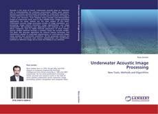 Capa do livro de Underwater Acoustic Image Processing