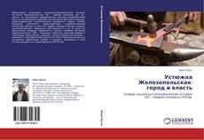 Устюжна Железопольская:  город и власть的封面