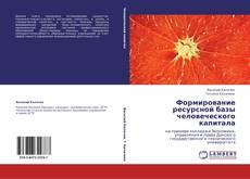 Формирование ресурсной базы человеческого капитала kitap kapağı