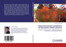 Socio-Economic Conditions of Domestic Child Laborers的封面