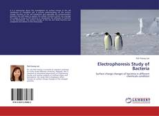 Bookcover of Electrophoresis Study of Bacteria